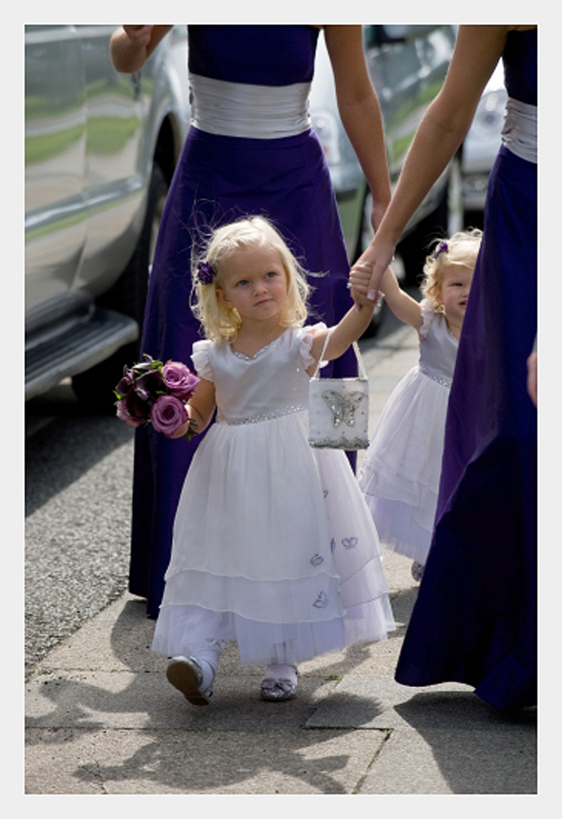 8e3827117d1 Cadbury purple and silver bridesmaids and flowergirls with butterfly detail  » Felicity Westmacott